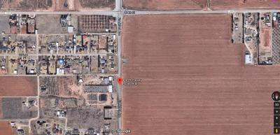 Lubbock Commercial For Sale: S Frankford