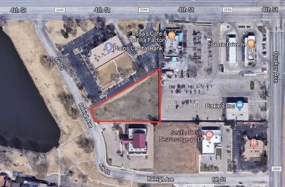Lubbock Commercial For Sale: 415 Raleigh Avenue