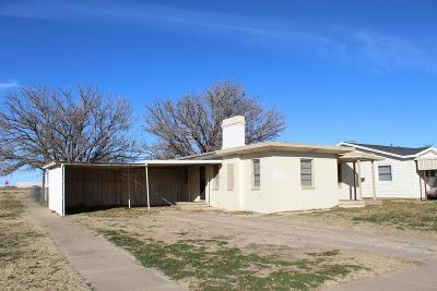 Lubbock County Single Family Home For Sale: 501 E Tulane Street