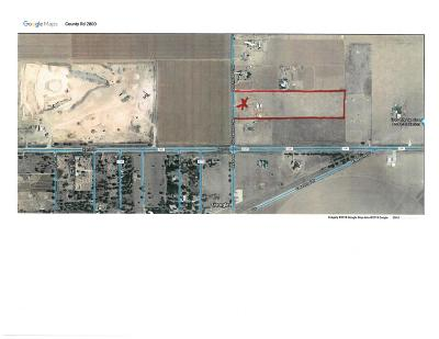 Lubbock County Residential Lots & Land For Sale: 3908 N County Road 2800