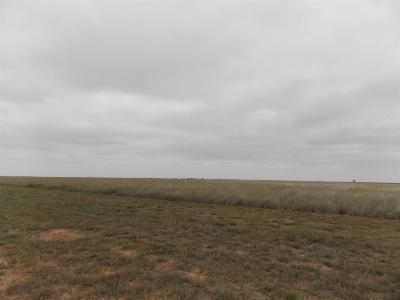 Abernathy TX Farm & Ranch Under Contract: $60,000
