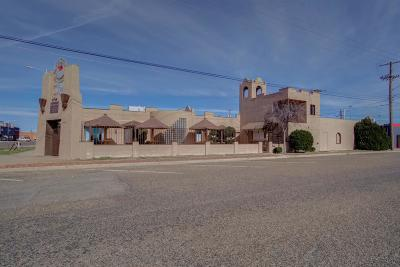 Lubbock Commercial For Sale: 1717 Crickets Avenue