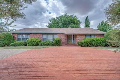 Brownfield Single Family Home For Sale: 1010 E Tate Street