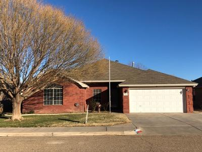 Single Family Home For Sale: 1007 Oshkosh Avenue