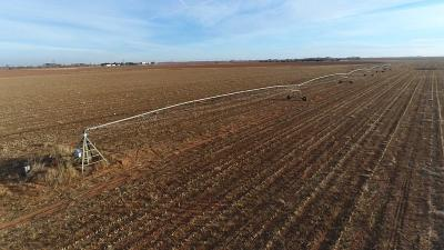 Farm & Ranch For Sale: State Highway 114