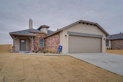 Single Family Home For Sale: 6220 100th