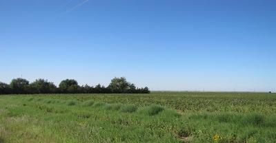 Lubbock County Residential Lots & Land For Sale: 3 N Farm Road 179