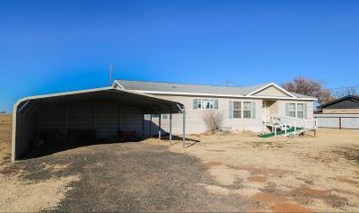 Bailey County, Lamb County Single Family Home For Sale: 702 W Bulldog Avenue