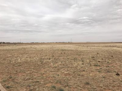Lubbock County Residential Lots & Land For Sale: 18915 S County Road 2300