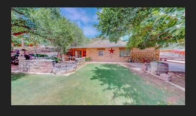 Single Family Home For Sale: 170 Pony Express