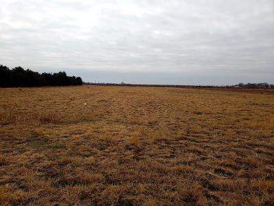 Lubbock County Residential Lots & Land For Sale: 5326 E County Road 6400