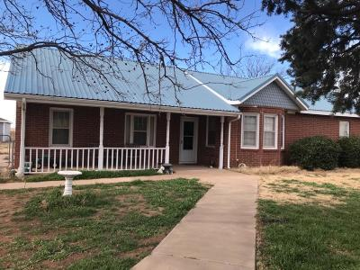 Single Family Home For Sale: 131 N State Highway 168
