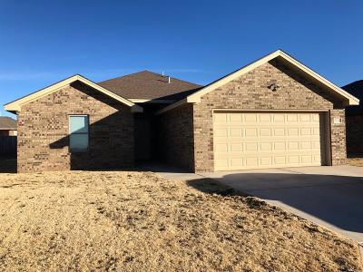 Single Family Home For Sale: 7518 87th Street
