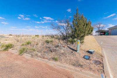 Lubbock County Residential Lots & Land For Sale: 13 Sunrise Lane