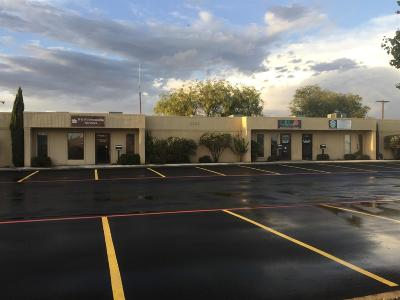 Lubbock Commercial For Sale: 5120 29th Drive