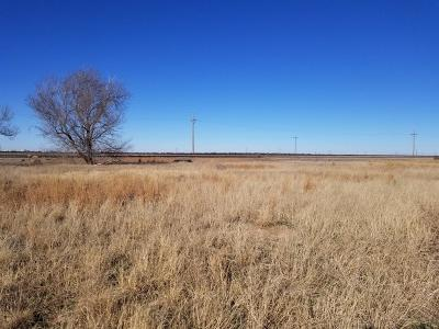 Lubbock County Residential Lots & Land For Sale: 2513 N Paris Avenue