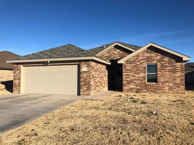 Lubbock Single Family Home For Sale: 7520 87th Street