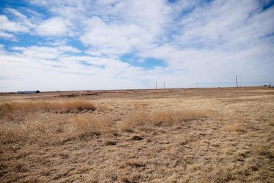 Wolfforth Residential Lots & Land For Sale: 6934 W Blue Quail Road