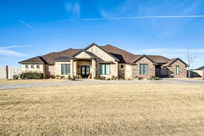 Lubbock Single Family Home Contingent: 8818 County Road 6875