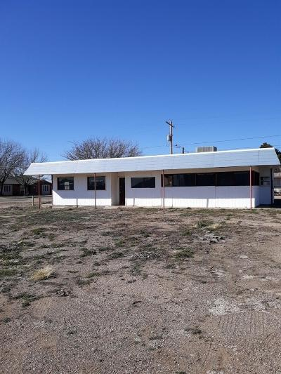 Abernathy Commercial For Sale: 303 Ave D