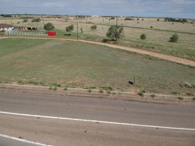 Lubbock County Residential Lots & Land For Sale: 3907 Idalou Road