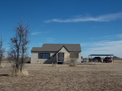 Lubbock Single Family Home For Sale: 1205 Farm Road 2378
