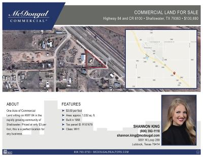 Lubbock County Residential Lots & Land For Sale: County Road 6100