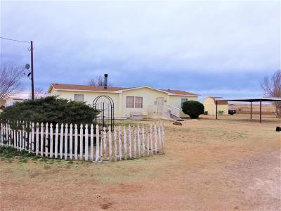 Single Family Home For Sale: 3141 N Alamo Road