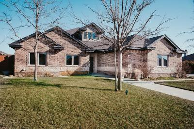 Shallowater Single Family Home For Sale: 834 Ave S