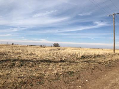Cochran County, Crosby County, Dickens County, Garza County, Hale County, Hockley County, Lamb County, Lubbock County, Lynn County, Terry County Farm & Ranch For Sale: 3750 Topeka