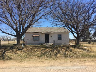 Bailey County, Lamb County Single Family Home For Sale: 1201 S E Avenue