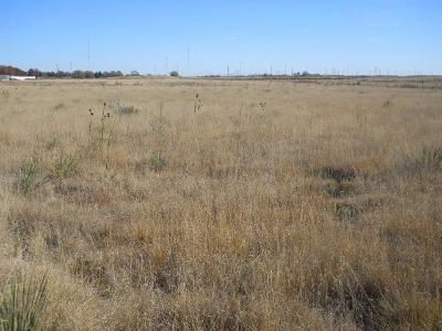 Bailey County, Lamb County Residential Lots & Land For Sale: Ave K