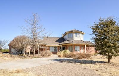 Shallowater  Single Family Home For Sale: 13805 N County Road 1500