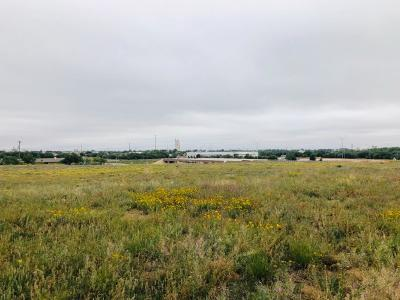 Lubbock County Residential Lots & Land For Sale: 801 Chaparral Street