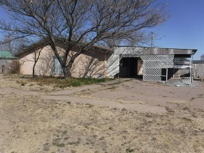 Bailey County, Lamb County Single Family Home For Sale: 915 E Fir Avenue