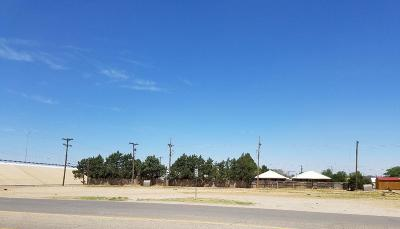 Lubbock Commercial Lots & Land For Sale: 710 82nd Street
