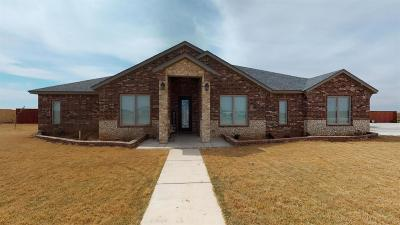 New Home TX Single Family Home For Sale: $430,000