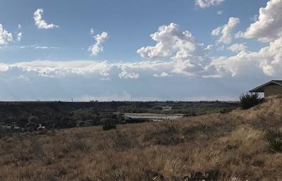 Lubbock County Residential Lots & Land For Sale: 31 Sunrise Lane