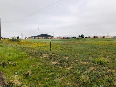 Lubbock County Residential Lots & Land For Sale: 2102 N Ave G