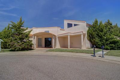 Single Family Home For Sale: 9201 Genoa Avenue