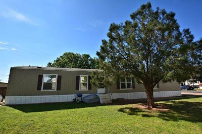 Lubbock Rental For Rent: 6801 W 19th