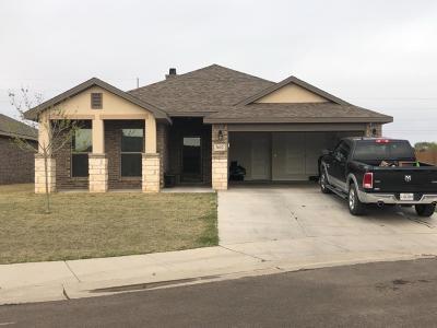 Lubbock Single Family Home For Sale: 3602 Trenton Avenue
