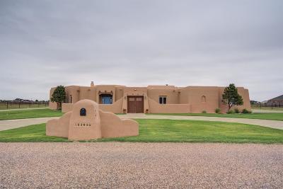 Lubbock Single Family Home For Sale: 16205 Belmont Avenue