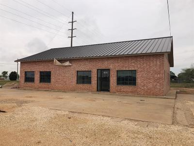 Brownfield, Meadow Commercial For Sale: 1601 Farm Road 2066