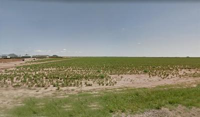 Lubbock County Residential Lots & Land For Sale: 17013 Farm Road 1730
