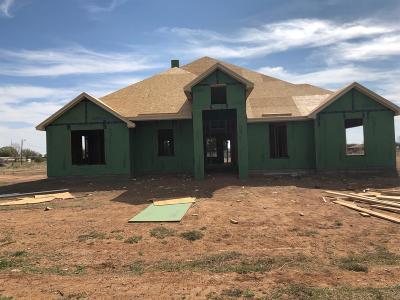 Single Family Home For Sale: 13401 Gardner Avenue