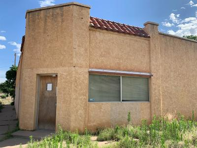 Lubbock Commercial For Sale: 2124 15th Street