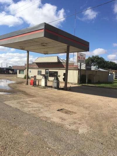 Slaton  Commercial For Sale: 6202 E Us Highway 84