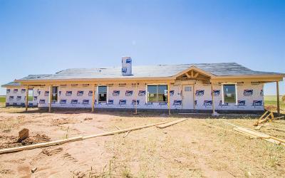 Idalou Single Family Home Contingent: 12023 N Farm Road 1729