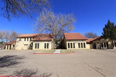 Lubbock Commercial For Sale: 8008 Slide Road